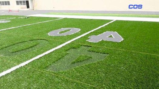 Estadio Emilio Royo: Fútbol Americano y Flag Football